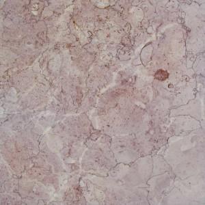 ROSA ORCHIDEA